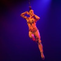 Cirque du Soleil VOLTA Highlights Street Sports and Urban Lifestyle