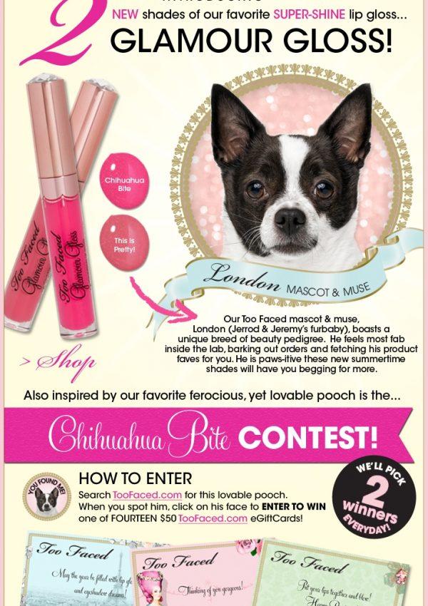 Too Faced Cosmetics Fun Contest Alert