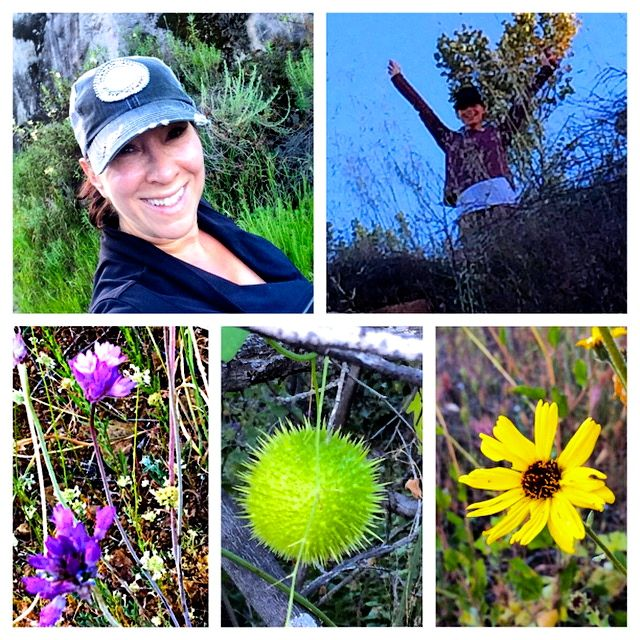 Oaks Hike Collage 2