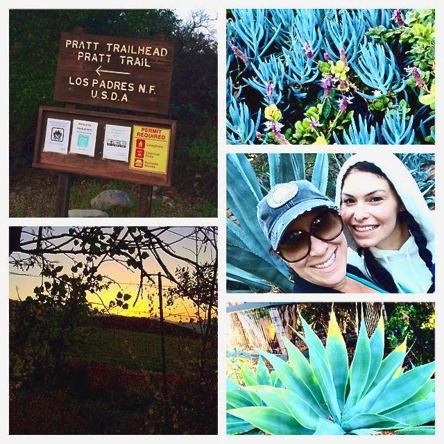 Oaks Hike